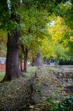 Architektur von Ruinen im Herbst Stockfotos