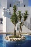 Architektursonderkommando: eine kleine Insel in einem Pool Stockbild