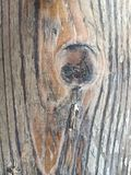 architektury budowy projekta ekologicznej tarcicy materialni sosnowi purposes texture drewno fotografia royalty free