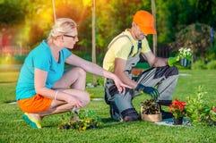 Architetto di giardini Working con il cliente Fotografie Stock Libere da Diritti