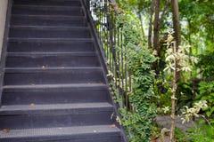 architettonico esteriore crescita di pianta verde dell'edera al corrimano d'annata con la scala d'acciaio posteriore immagine stock libera da diritti