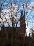 Architettura del Belgio attraverso i rami di albero nudi Immagini Stock