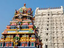 Architettura del tempio di Annamalaiyar in Tiruvannamalai, India Fotografie Stock Libere da Diritti