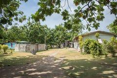 Architettura del villaggio dell'isola di Dravuni Fotografie Stock