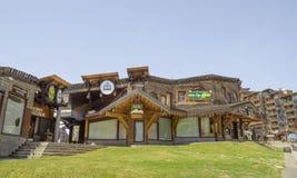 Architettura di legno di Avoriaz, alpi francesi Fotografia Stock
