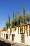 Architettura IV del San Miguel fotografia stock
