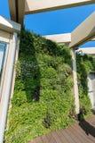 Architettura moderna con una parete verticale del giardino immagine stock
