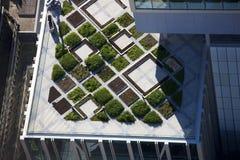 Architettura moderna del giardino superiore del tetto Fotografie Stock Libere da Diritti