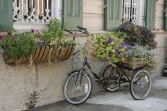 Architettura tradizionale del quartiere francese a New Orleans Fotografia Stock Libera da Diritti