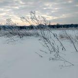 Architettura tradizionale russa Precipitazioni nevose, alberi, alta erba asciutta Fotografia Stock