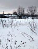 Architettura tradizionale russa Precipitazioni nevose, alberi, alta erba asciutta Fotografie Stock