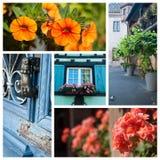 Architeture και λουλούδια στη Colmar - τη Γαλλία Στοκ φωτογραφία με δικαίωμα ελεύθερης χρήσης