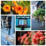 Architeture and flowers in Colmar - France. Collage Royalty Free Stock Photography