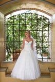 architict sukienkę Obraz Royalty Free