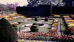 Archivalische Hampton Court Palace-Gärten stock footage