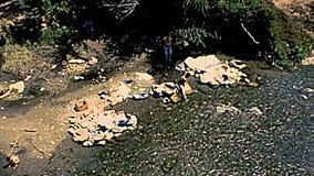 Archivalische mexikanische Frauen, die Kleidung im Fluss waschen stock video