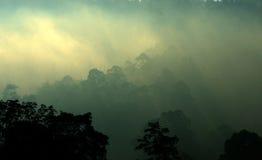 Archivbild der nebeligen Landschaft Lizenzfreie Stockfotografie