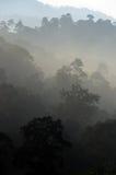 Archivbild der nebeligen Landschaft Stockfoto