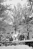 Archivbild eines schneienden Winters in Boston, Massachusetts, USA Stockbild