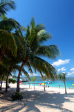 Archivbild von Cave Beach Club, Montego Bay, Jamaika Doktors Stockfotos