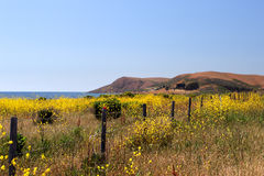 Archivbild von Kaliforniens zentraler Küste, Big Sur, USA Stockfoto