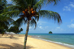Archivbild von Tioman-Insel, Malaysia Stockfotografie