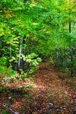 Archivbild von Vermont, USA Stockfotos