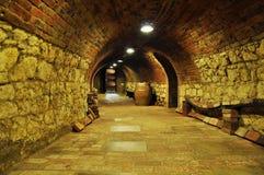 Archivio del vino Fotografie Stock