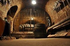 Archivio del vino Fotografia Stock Libera da Diritti