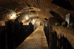 Archivio del vino Immagine Stock