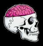 """Archivio dell'illustrazione delle azione del †dell'illustrazione delle azione """"del file†del cervello """"del cranio illustrazione vettoriale"""