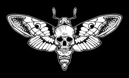 """Archivio dell'illustrazione delle azione del †dell'illustrazione delle azione """"del †del lepidottero """"del cranio illustrazione vettoriale"""