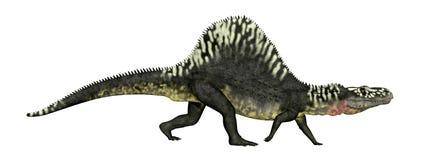 Archosaur Arizonasaurus που απομονώνεται στο άσπρο υπόβαθρο διανυσματική απεικόνιση