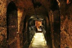 Archs και πόρτες στη σπηλιά κρασιού Στοκ Φωτογραφία