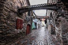 Archs в старом городке Talinn, Эстонии стоковые изображения