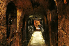 Archs and doors in the wine cave. Stock Photography