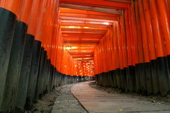 Archway de Fushimi Inari Torii Fotografia de Stock Royalty Free
