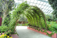 Archway, Flower Dome, Gardens by the Bay Stock Photography