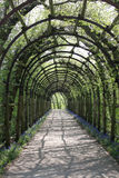 Archway. With green plants in the sunshine Stock Photo