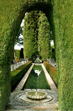 Archway in hedge, the Alhambra. Archway in a hedge at the Alhambra Palace gardens, Granada, Spain royalty free stock image