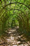 Archway in park Royalty Free Stock Photo