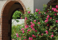 Archway and roses Royalty Free Stock Image