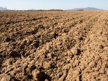 Arcilla polvorienta en campo El campo arado vacío espera la siembra Fotos de archivo