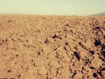 Arcilla polvorienta en campo El campo arado vacío espera la siembra Imagen de archivo libre de regalías