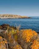 Arcipelago di Stoccolma un chiaro giorno fotografia stock libera da diritti