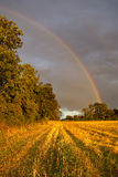 Arco-íris de um campo Fotos de Stock Royalty Free