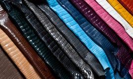 Arco-íris do couro Fotografia de Stock
