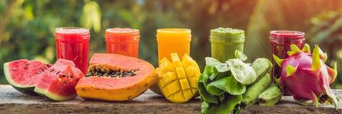 Arco-íris dos batidos A melancia, a papaia, a manga, os espinafres e o dragão frutificam Os batidos, sucos, bebidas, bebem a vari Fotografia de Stock