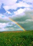Arco-íris grande sobre campos das videiras e de campos de trigo verdes Imagem de Stock