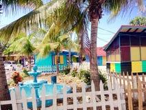 Arco-íris jamaicano Imagens de Stock